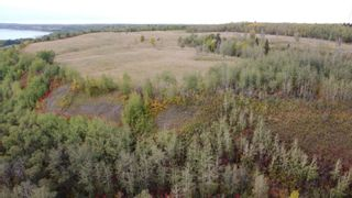 Photo 18: Hwy 11 & RR 53: Rural Parkland County Rural Land/Vacant Lot for sale : MLS®# E4265869