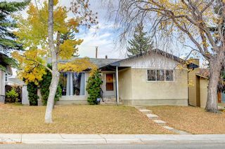 Main Photo: 808 78 Avenue NW in Calgary: Huntington Hills Detached for sale : MLS®# A1153201