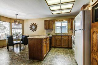 Photo 9: 20293 125 Avenue in Maple Ridge: Northwest Maple Ridge House for sale : MLS®# R2137356