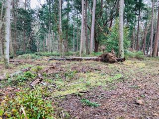 Photo 4: lot 7 Salal Dr in : Isl Mudge Island Land for sale (Islands)  : MLS®# 863615