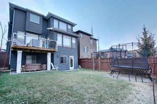 Photo 49: 138 Nolanshire Crescent NW in Calgary: Nolan Hill Detached for sale : MLS®# A1100424