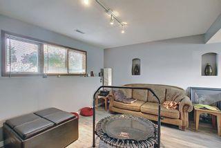 Photo 23: 5305 46 Street: Rimbey Detached for sale : MLS®# A1134871