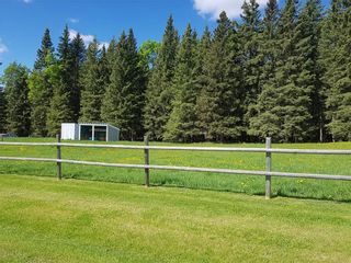 Photo 40: 5224 Township Road 292: Rural Mountain View County Detached for sale : MLS®# A1096755