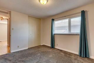 Photo 11: 144 Marbrooke Circle NE in Calgary: Marlborough Detached for sale : MLS®# A1098695