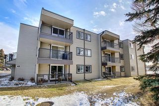 Photo 1: 305 40 Glenbrook Crescent: Cochrane Apartment for sale : MLS®# A1052145