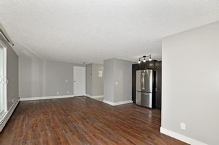 Photo 10: 306 280 Banister Drive: Okotoks Apartment for sale : MLS®# A1142558