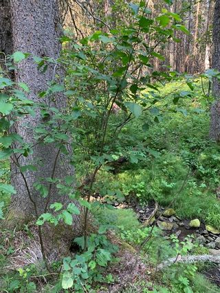 Photo 23: .. None: Bragg Creek Residential Land for sale : MLS®# A1131758