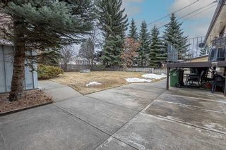 Photo 48: 5 SCARBORO Place: St. Albert House for sale : MLS®# E4234267