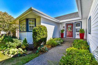 Photo 19: 13362 14A Avenue in Surrey: Crescent Bch Ocean Pk. House for sale (South Surrey White Rock)  : MLS®# R2353627