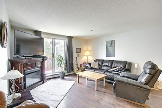 Main Photo: 207 9 Country Village Bay NE in Calgary: Country Hills Village Apartment for sale : MLS®# A1126918