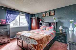Photo 16: 307 FALTON Drive NE in Calgary: Falconridge Detached for sale : MLS®# C4238621