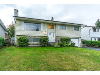 Photo 3: 20250 48 AVENUE in Langley: Langley City Home for sale ()  : MLS®# R2305434