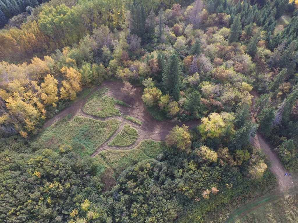 Photo 6: Photos: N1/2 SE19-57-1-W5: Rural Barrhead County Rural Land/Vacant Lot for sale : MLS®# E4217154