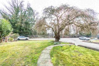 Photo 26: 22165 CLIFF Avenue in Maple Ridge: West Central House for sale : MLS®# R2541842