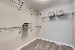 Photo 38: 251 West Grove Point SW in Calgary: West Springs Detached for sale : MLS®# A1056833