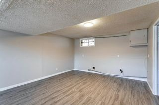 Photo 39: 3812 49 Street NE in Calgary: Whitehorn Detached for sale : MLS®# A1054455