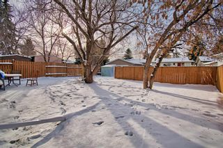 Photo 26: 180 Maitland Place NE in Calgary: Marlborough Park Detached for sale : MLS®# A1048392