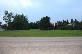 Photo 3: 5 Avenue Princess Street: Elnora Land for sale : MLS®# A1022937