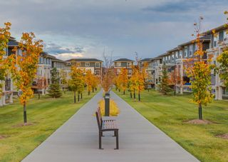 Photo 43: 604 428 NOLAN HILL Drive NW in Calgary: Nolan Hill Row/Townhouse for sale : MLS®# A1150776