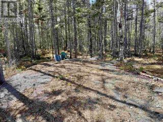 Photo 3: Lot 3 Highway 8 in Harmony: Vacant Land for sale : MLS®# 202108277