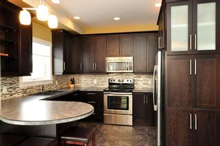 Photo 14: 5 Cherry Tree Lane in Oakbank: Single Family Detached for sale : MLS®# 1304843