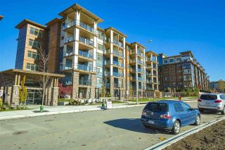 """Photo 20: 207 20673 78 Avenue in Langley: Willoughby Heights Condo for sale in """"Grayson"""" : MLS®# R2530070"""