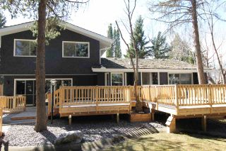Photo 47: 12 QUESNELL Road in Edmonton: Zone 22 House for sale : MLS®# E4212400