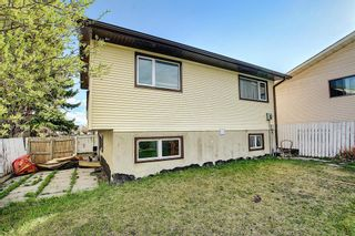 Photo 38: 20 Whitefield Close NE in Calgary: Whitehorn Detached for sale : MLS®# A1101190