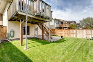 Photo 39: 60 Shawfield Way SW in Calgary: Shawnessy Detached for sale : MLS®# A1113595