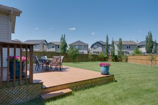 Photo 42: 160 Brightonstone Gardens SE in Calgary: New Brighton Detached for sale : MLS®# A1009065