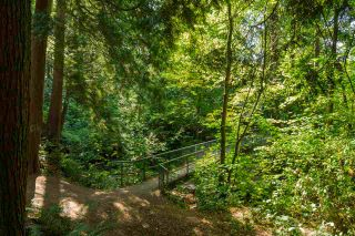 Photo 20: 1497 HAROLD ROAD in North Vancouver: Lynn Valley House for sale : MLS®# R2206557