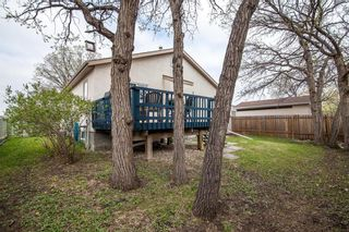 Photo 39: 193 Stradford Street in Winnipeg: Crestview Residential for sale (5H)  : MLS®# 202011070