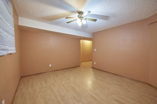 Photo 37: 172 ERIN MEADOW Way SE in Calgary: Erin Woods Detached for sale : MLS®# A1028932