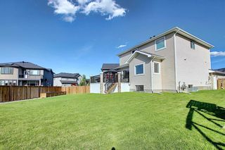 Photo 44: 117 Kinniburgh Way: Chestermere Detached for sale : MLS®# C4301536