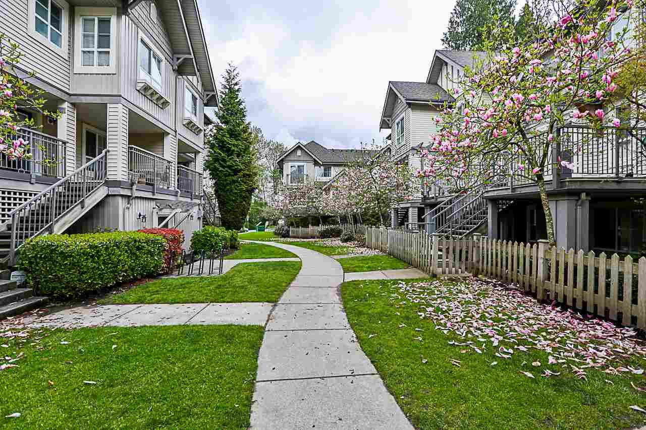 Main Photo: 37 7088 17TH Avenue in Burnaby: Edmonds BE Townhouse for sale (Burnaby East)  : MLS®# R2456963