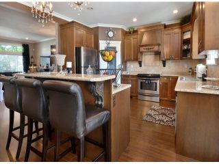 """Photo 7: 15066 61A Avenue in Surrey: Sullivan Station House for sale in """"Sullivan Heights"""" : MLS®# F1430330"""