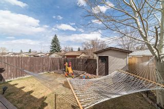 Photo 29: 49 Templeson Crescent NE in Calgary: Temple Detached for sale : MLS®# A1089563