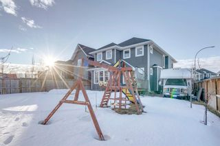 Photo 45: 239 AUBURN SPRINGS Close SE in Calgary: Auburn Bay Detached for sale : MLS®# A1061527