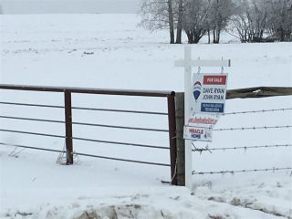 Photo 19: RR74 Twp 514: Rural Parkland County Rural Land/Vacant Lot for sale : MLS®# E4183439