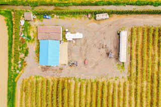 Photo 14: 4081 DIXON Road: Agri-Business for sale in Abbotsford: MLS®# C8038207