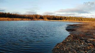 Photo 18: 5248 Port Morien Drive in Round Island: 207-C. B. County Vacant Land for sale (Cape Breton)  : MLS®# 202120892