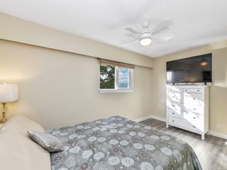 Photo 18: 204 991 Cloverdale Ave in Saanich: SE Quadra Condo for sale (Saanich East)  : MLS®# 887469