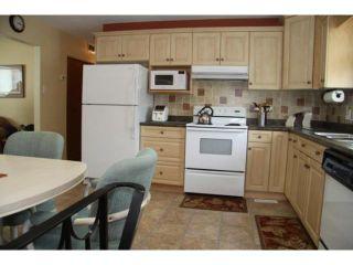 Photo 8: 417 Wales Avenue in WINNIPEG: St Vital Residential for sale (South East Winnipeg)  : MLS®# 1104052