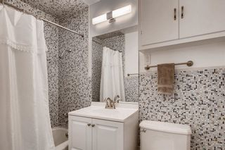 Photo 19: SAN DIEGO House for sale : 3 bedrooms : 3927 Loma Alta