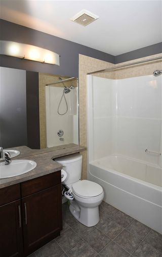Photo 23: 407 10121 80 Avenue in Edmonton: Zone 17 Condo for sale : MLS®# E4240239