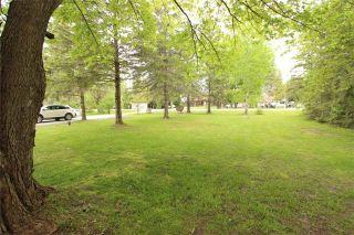 Photo 4: 72 Driftwood Shores Road in Kawartha Lakes: Rural Eldon House (Bungalow) for sale : MLS®# X3698049