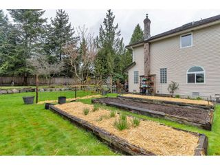 Photo 37: 7283 149A Street in Surrey: East Newton House for sale : MLS®# R2560399