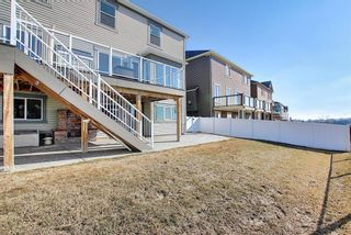Photo 46: 231 LAKEPOINTE Drive: Chestermere Detached for sale : MLS®# A1080969