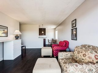 Photo 7: 412A 4455 Greenview Drive NE in Calgary: Greenview Apartment for sale : MLS®# A1101294