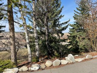 Photo 45: 80029 196 Avenue W: Rural Foothills County Detached for sale : MLS®# A1073273